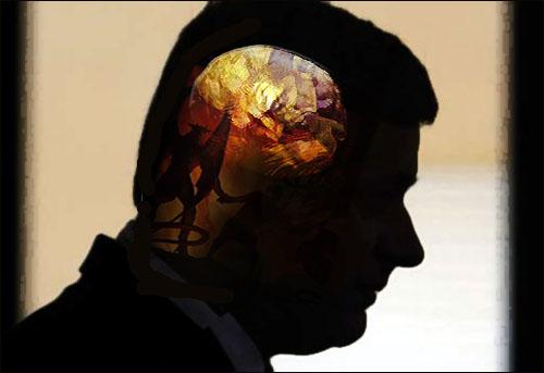 harper-brain2